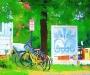 Bicycles-at-Stifel-Capra