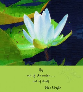 "Nick Virgilio's ""lily"" poem with a digital haige painting by Rick Black"