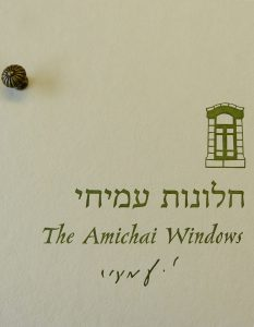 Amichai Windows box cover