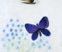 Three Butterflies