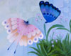 Fine Art Note Cards | Butterflies by Bill Giacalone | Turtle Light Press
